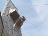 climbtower-093_1.jpg